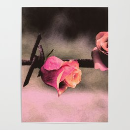 Barbed Wire Roses (Love) Poster