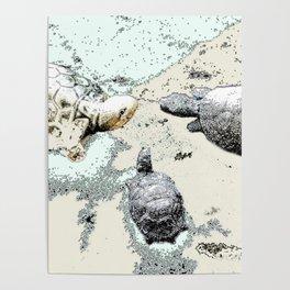 Turtle Caucus Poster