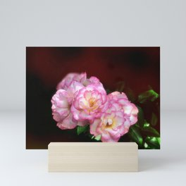 Beautiful Pink Roses Mini Art Print