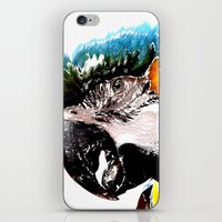 parrot iPhone & iPod Skins featuring Parrot by Regan's World