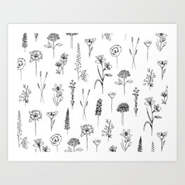 Patagonian Wildflowers White Horizontal Art Print