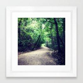 Walk Woods Framed Art Print