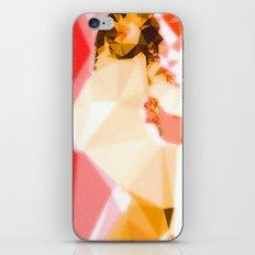Jet Sex Radio iPhone & iPod Skin