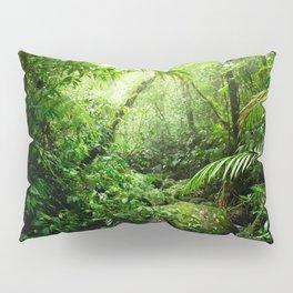 Warm Glow Rainforest Creek Pillow Sham