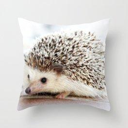 Geometric Hedgehog Throw Pillow