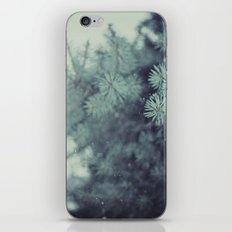 Winter Wishes iPhone & iPod Skin
