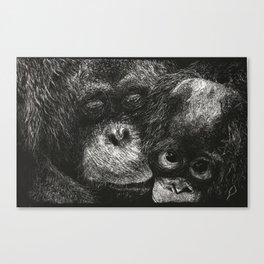 Orangutan Mother and Baby Scratchboard Canvas Print