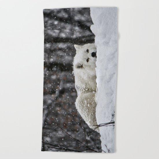 Dreams of warmer weather Beach Towel
