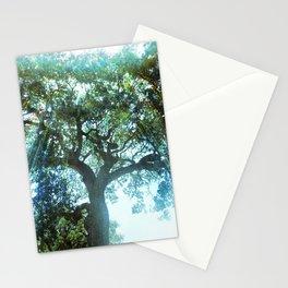 Ramona Oak Tree Stationery Cards