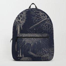 Vintage Radiolaria Diagram Backpack