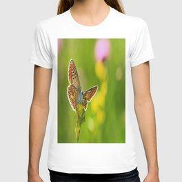 kelebek T-shirt