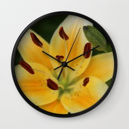 Asiatic Yellow Lily Wall Clock