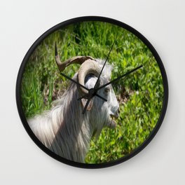 Side View of A Billy Goat Grazing Wall Clock