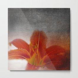 liking orange -02- Metal Print