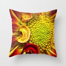 Gerbera Daisy 3 Throw Pillow