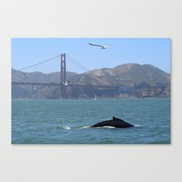 Whale of a Time Canvas Print