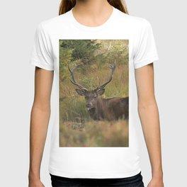 Red deer T-shirt