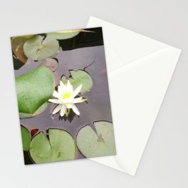 Water Lilly Stationery Cards