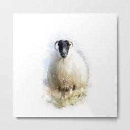 The Boss Sheep Metal Print
