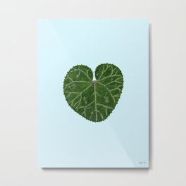 Cyclamen leaf - light blue Metal Print