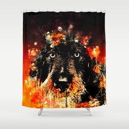wire haired dachshund dog ws Shower Curtain