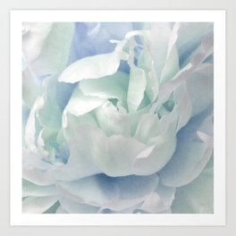 Peony in Blue White Art Print
