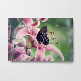 Butterfly & Lily Pink Photograph I Metal Print