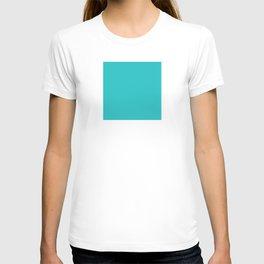 DPCSD Dark cyan color T-shirt