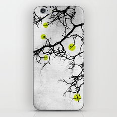 Wintertree Abstract iPhone & iPod Skin