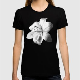 White Lily Black Background T-shirt