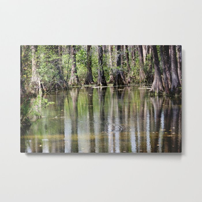 Cypress Mirror Metal Print