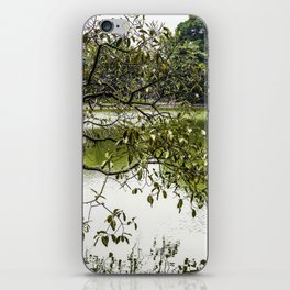 Tree Branches Hanging over the Emerald Green Colored Hoan Kiem Lake in Hanoi, Vietnam iPhone Skin