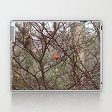 Cardinal Laptop & iPad Skin