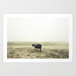 Lonely black sheep Art Print