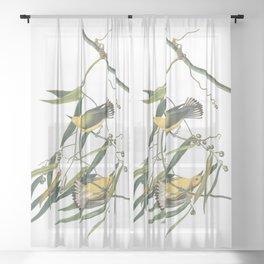 Prothronolary warbler, Birds of America, Audubon Plate 3 Sheer Curtain