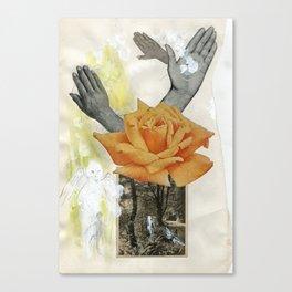 3a Canvas Print