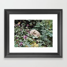 Resting Intuition Framed Art Print