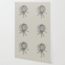 Spider lettuce by Piki Wallpaper