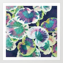 Geranium Art Print