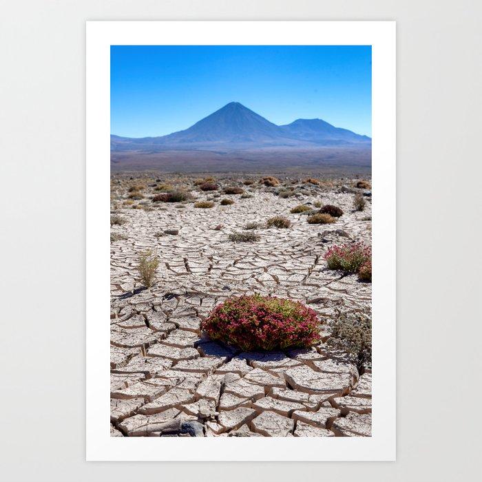 Chile to Bolivia Art Print