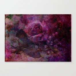 Valley Rose Canvas Print