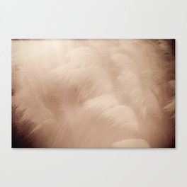 Unharnessed Texas Wind Canvas Print