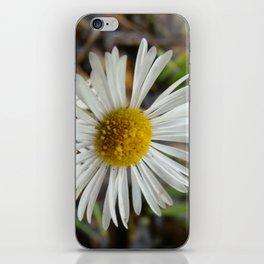 Three is company iPhone Skin