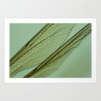 Pretty Things / Dragonfly Wings Art Print