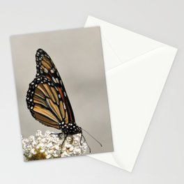 A Fine, Upstanding Monarch Stationery Cards