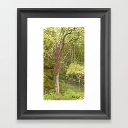 tall the clothes line of peace #86 Framed Art Print