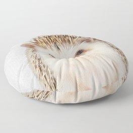 Hedgehog - Colorful Floor Pillow