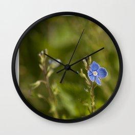 The little blue flower Wall Clock