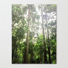 Treetops II Canvas Print