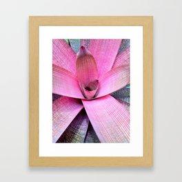 nature inspires 2 Framed Art Print